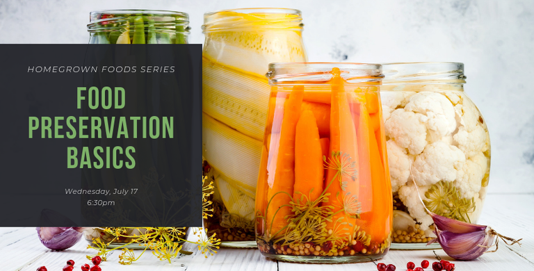 Food preservation basics